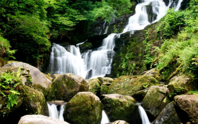 Don't Miss the Stunning Torc Waterfall near Killarney, Co. Kerry